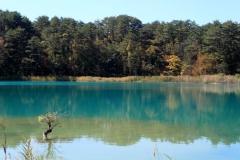 14.10.19 - Goshinkinuma