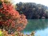 2014.10.19_-_Goshinkinuma_-_0003