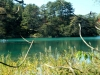 2014.10.19_-_Goshinkinuma_-_0015