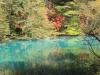 2014.10.19_-_Goshinkinuma_-_0049